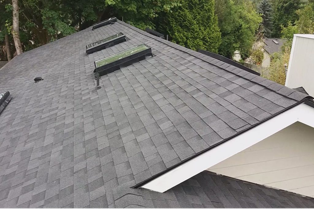 Roof Handyman Services